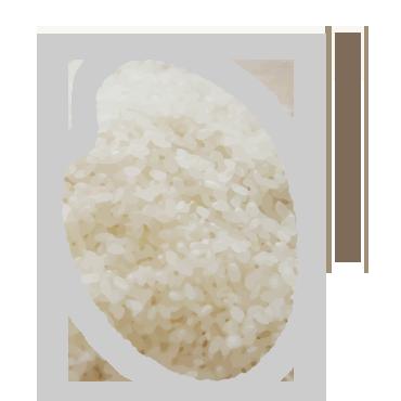 骨格事業 米穀